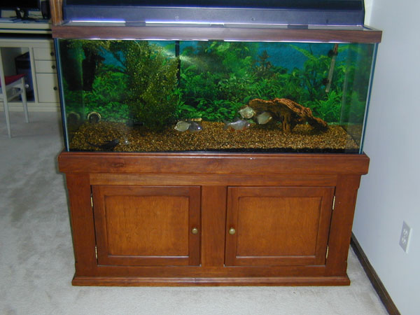 This is my very first real woodworking project for First fish tank